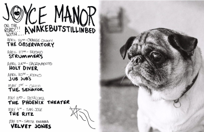 Joyce Manor 2018 Tour