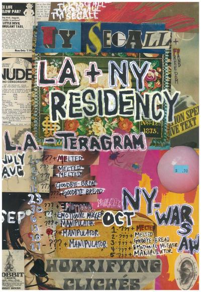 Ty Segall Residency Poster