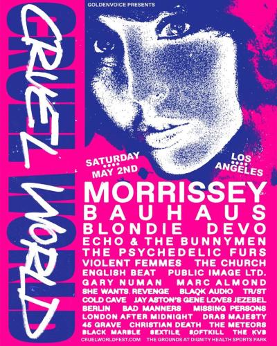 Cruel World 2020 Festival Poster
