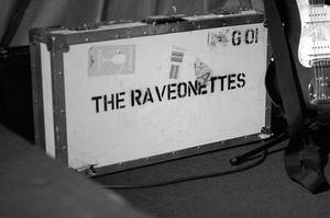Raves2